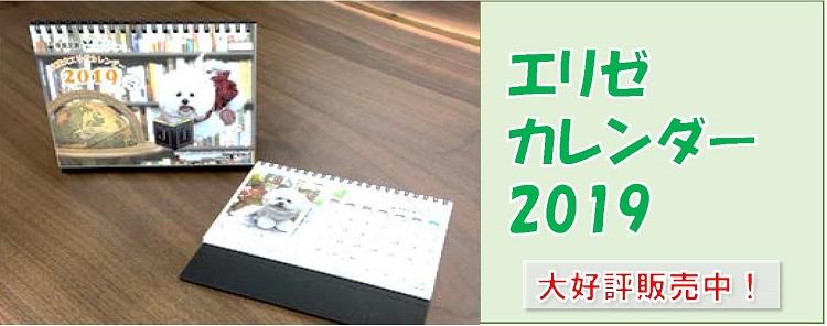エリゼカレンダー2019